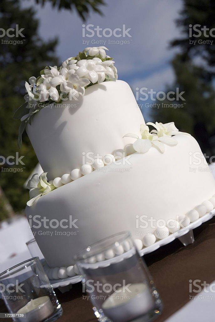 Designer Cake royalty-free stock photo