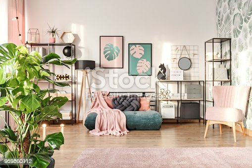 Big monstera plant in a designer living room interior with an emerald green cozy settee and pink elements