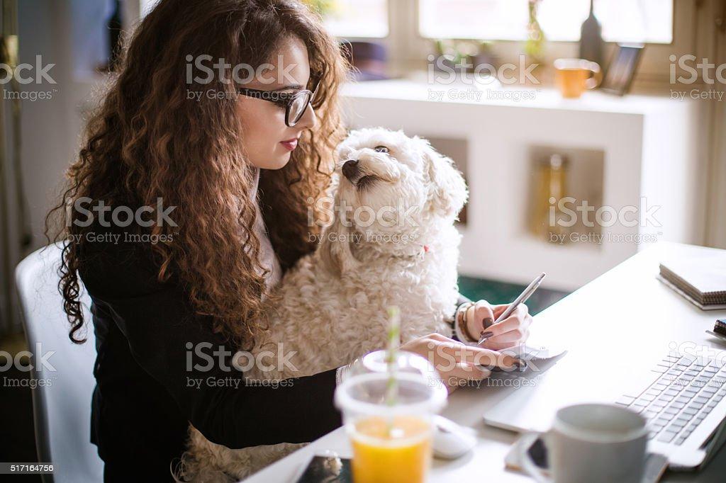 Designer de trabalhando no escritório em casa e segurando seu filhote - foto de acervo
