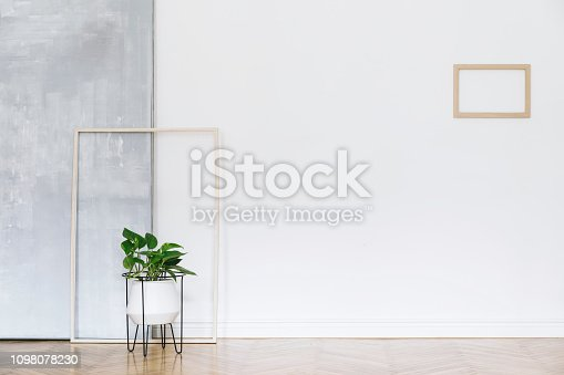 Modern and bright nordic living room with design sofa and furniture on the grey wall. Brown wooden parquet. Concept of minimalistic interior.