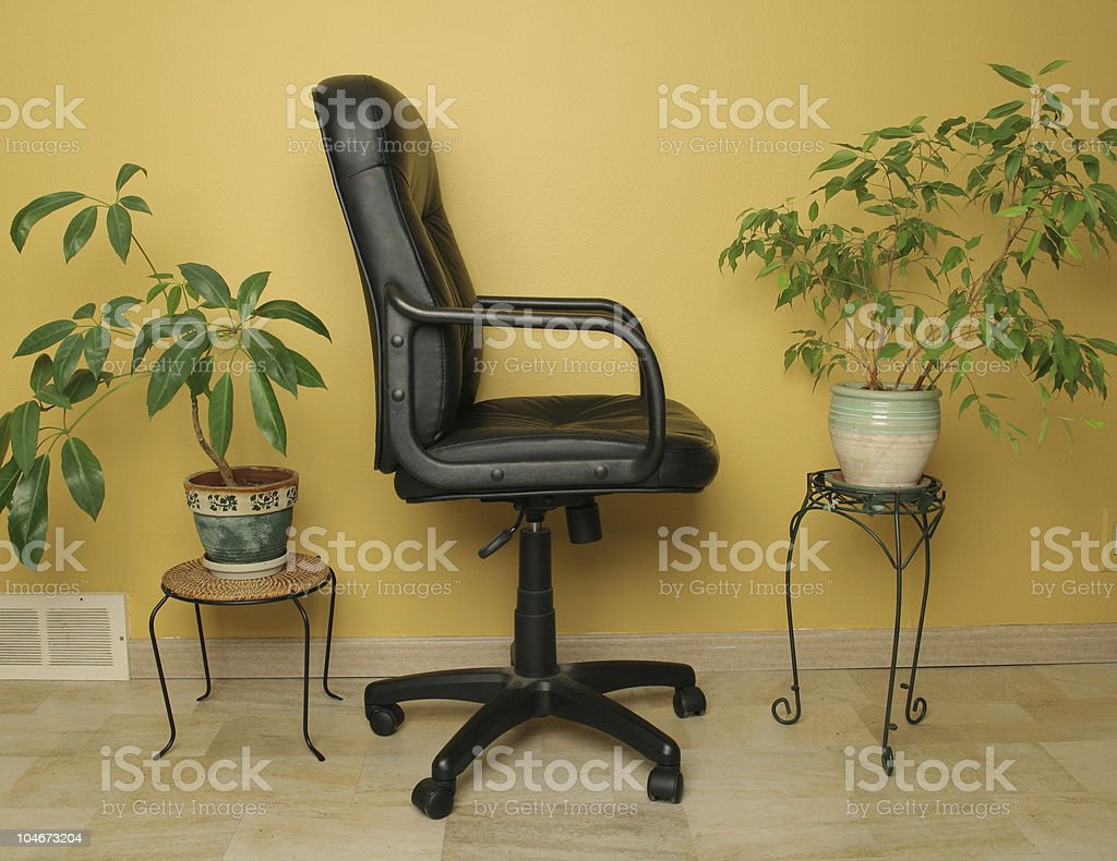 Desk chair and indoor plants royalty-free stock photo
