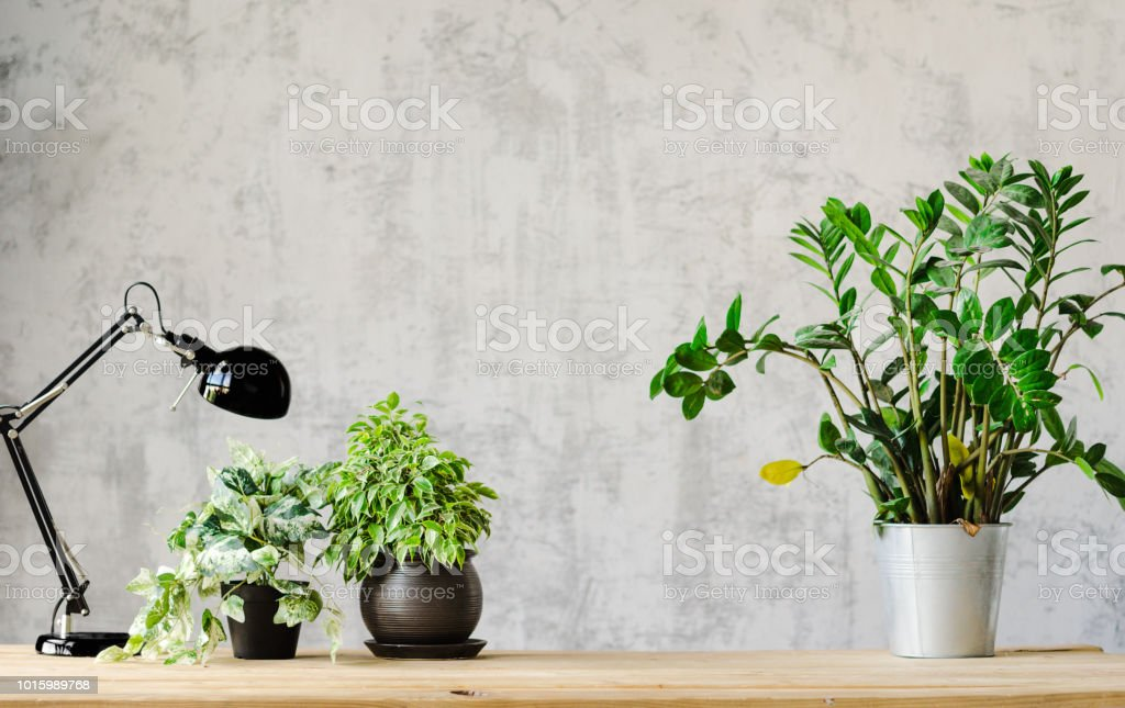 A desk for working with a lamp and flowers on a wooden surface and a...