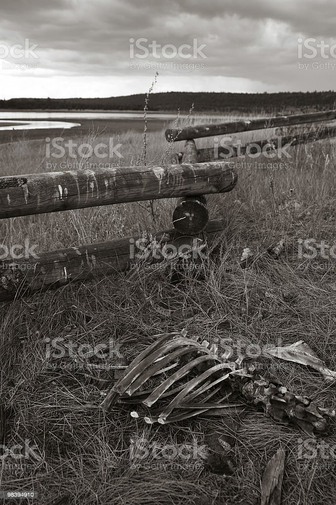 Desolate land royalty-free stock photo