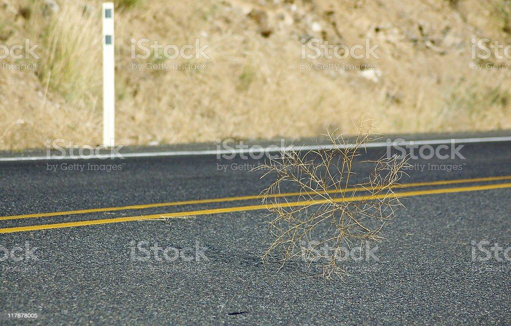 Desolate Road stock photo