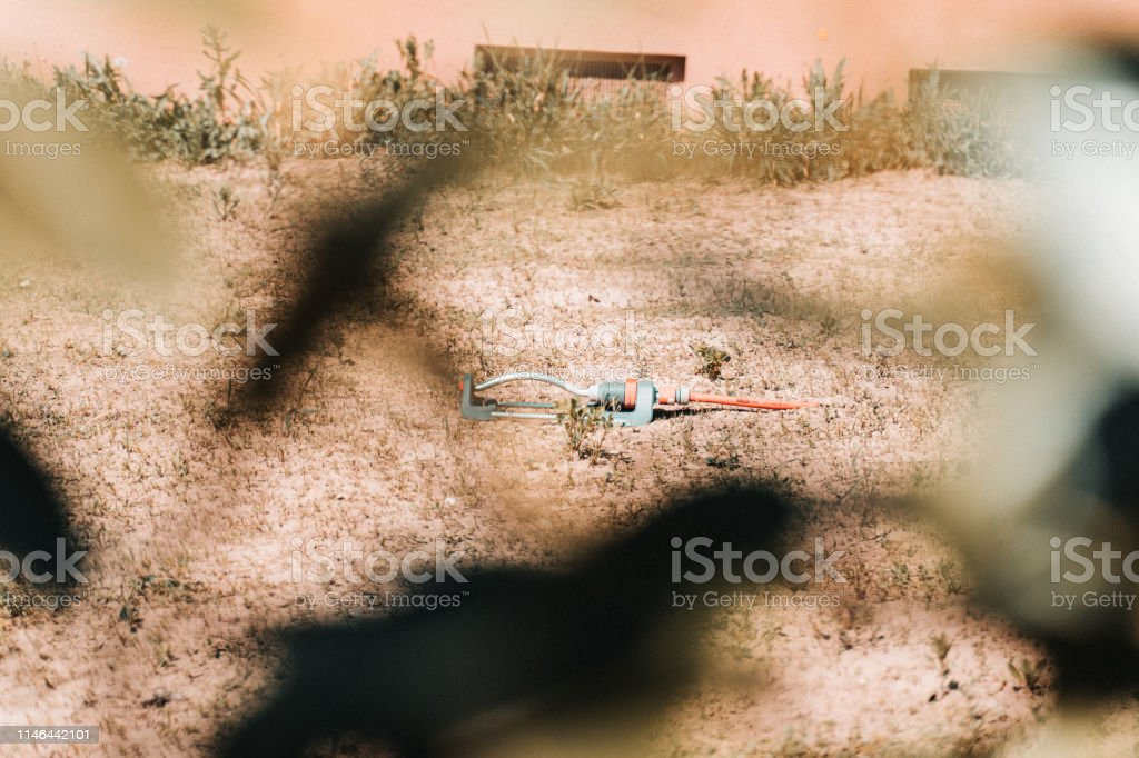 Desperate Attempt To Moisten Dry Soil With A Sprinkler In A Garden In Germany 2019 Stock Photo Download Image Now Istock Desperate — adjective 1) a desperate look syn: https www istockphoto com photo desperate attempt to moisten dry soil with a sprinkler in a garden in germany 2019 gm1146442101 308905170