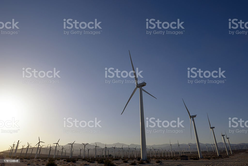 Desrt Wind Farm royalty-free stock photo