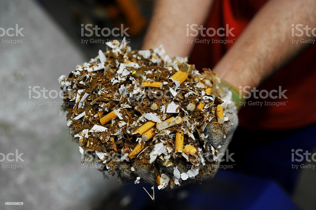Destroyed counterfeited cigarettes stock photo