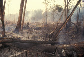 istock Destruction Global Warming 172356558
