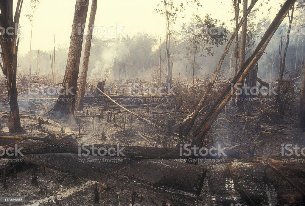 Destruction Global Warming stock photo