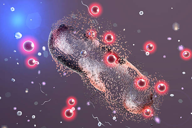 Destruction of a bacterium by silver nanoparticles Destruction of a bacterium by silver nanoparticles, 3D illustration. An illustration can be also used to demonstrate action of any antibiotic substance or drug nanoparticle stock pictures, royalty-free photos & images
