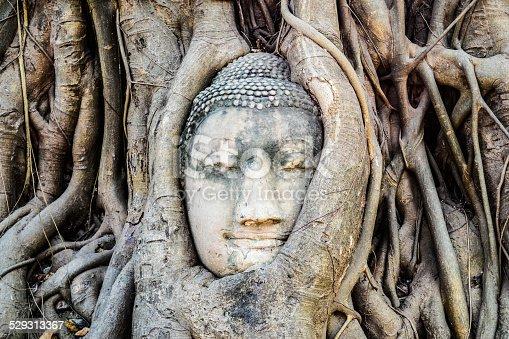 Buddha statue entwined by roots of spiritual tree at Wat Phra Mahathat Ayuthaya Thailand.