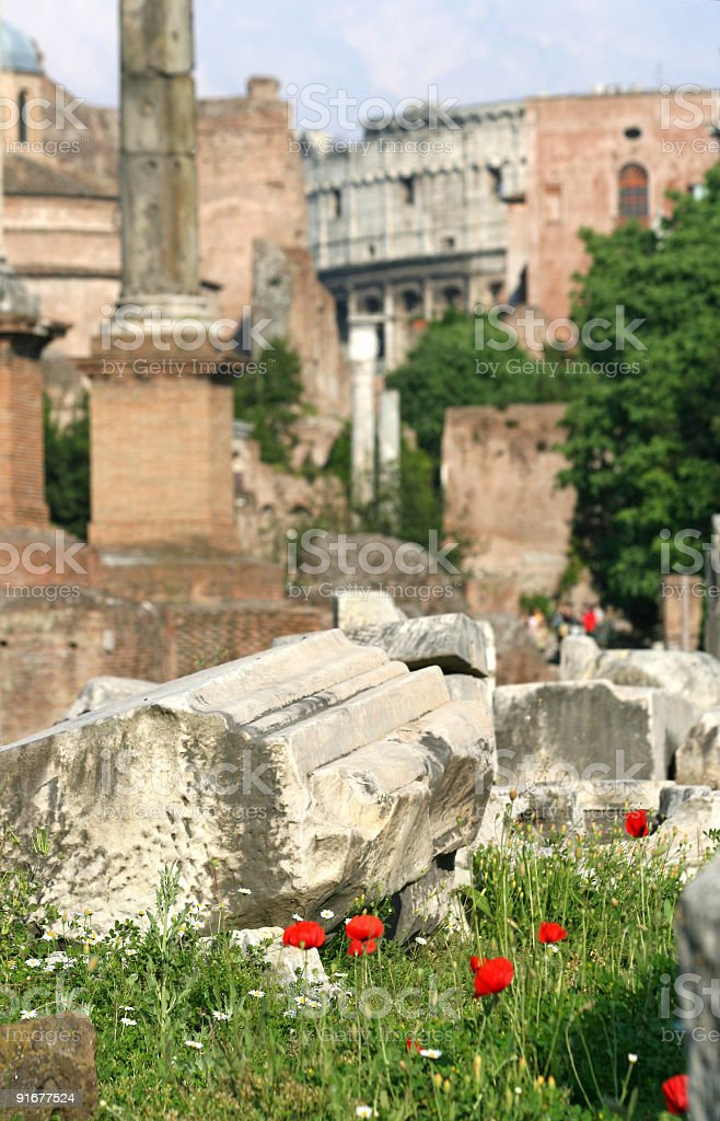 Detail from Forum Romanum in Rome, Italy royalty-free stock photo