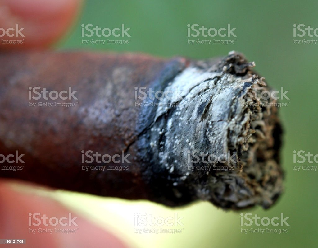detail of a cigar ash photographed from very close stock photo