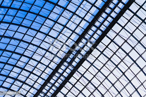 istock Detail of a glass dome with a metal frame close-up, armature. Graphic texture for a modern background 1039801872
