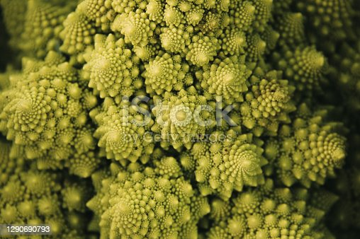 Detail of a Romanesco Broccoli with fractal form