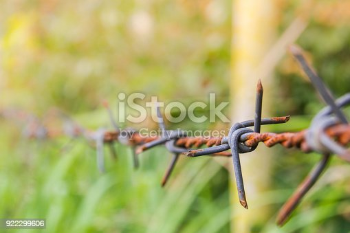91708255 istock photo Detail of a rusty barbed wire fence on blurred nature background 922299606