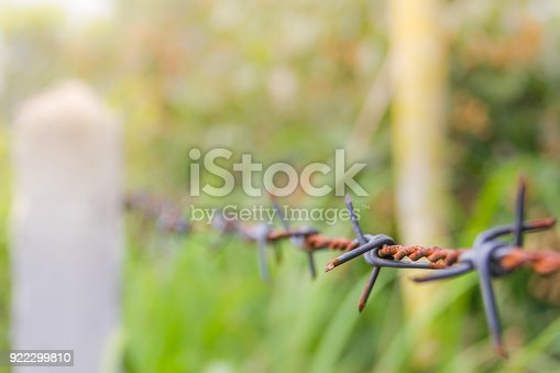 91708255 istock photo Detail of a rusty barbed wire fence on blurred nature background 922299810