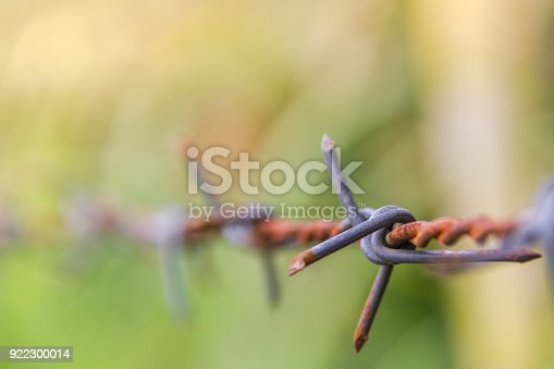 91708255 istock photo Detail of a rusty barbed wire fence on blurred nature background 922300014