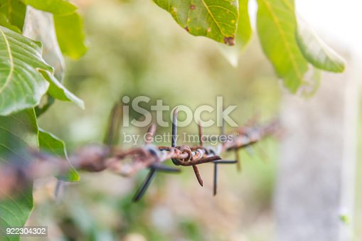 91708255 istock photo Detail of a rusty barbed wire fence on blurred nature background 922304302