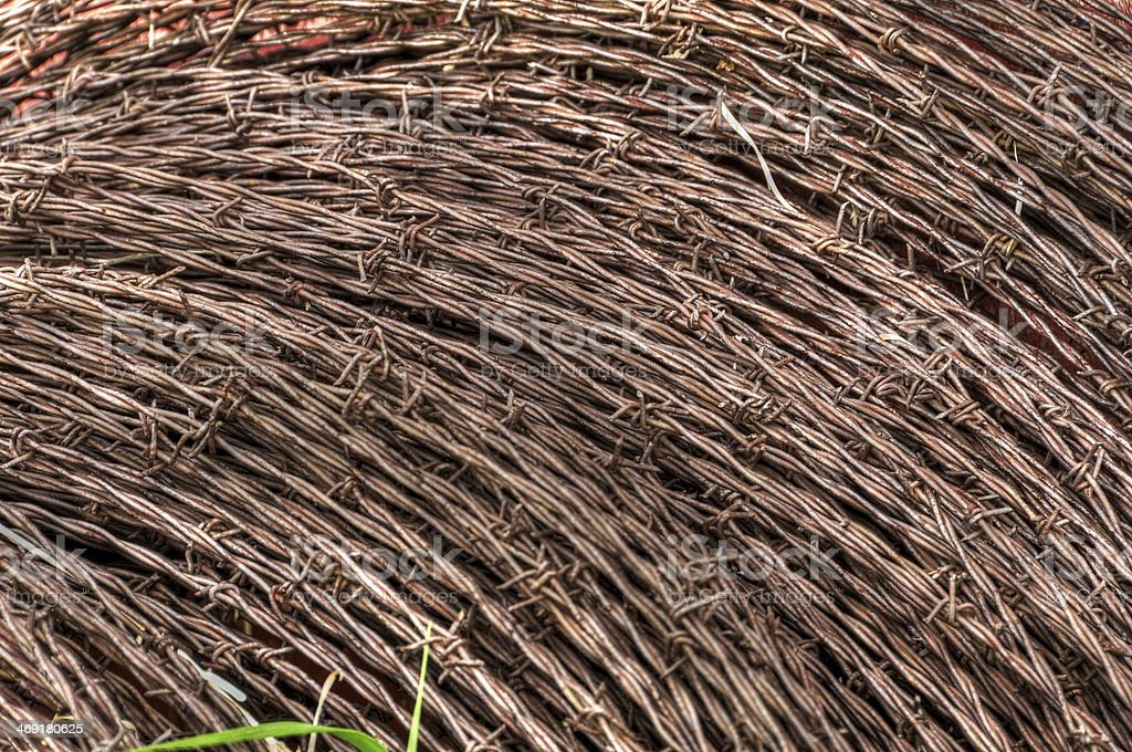 detail of a rusty barbed wire spool royalty-free stock photo
