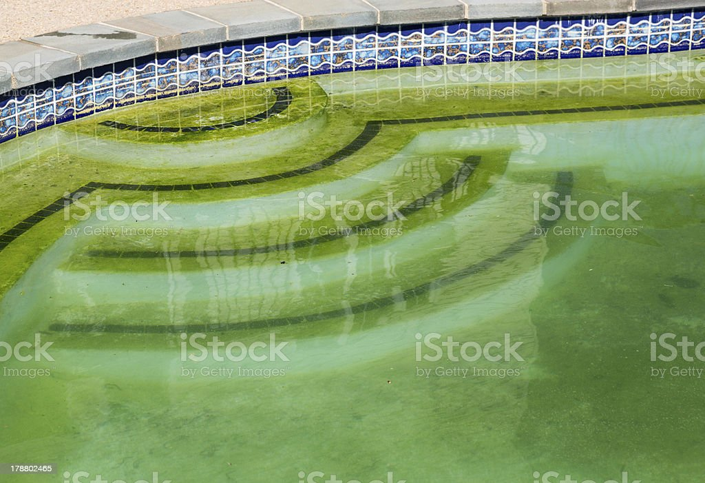 Detail of backyard pool with green water that needs cleaning stock photo