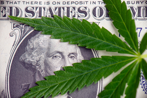 Detail Of Cannabis Leaf Over American Dollar Bill Stock Photo - Download Image Now