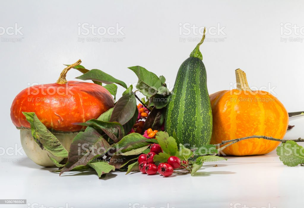 Detail of decorative pumpkin with acorn, brier and leaves isolated on white background stock photo