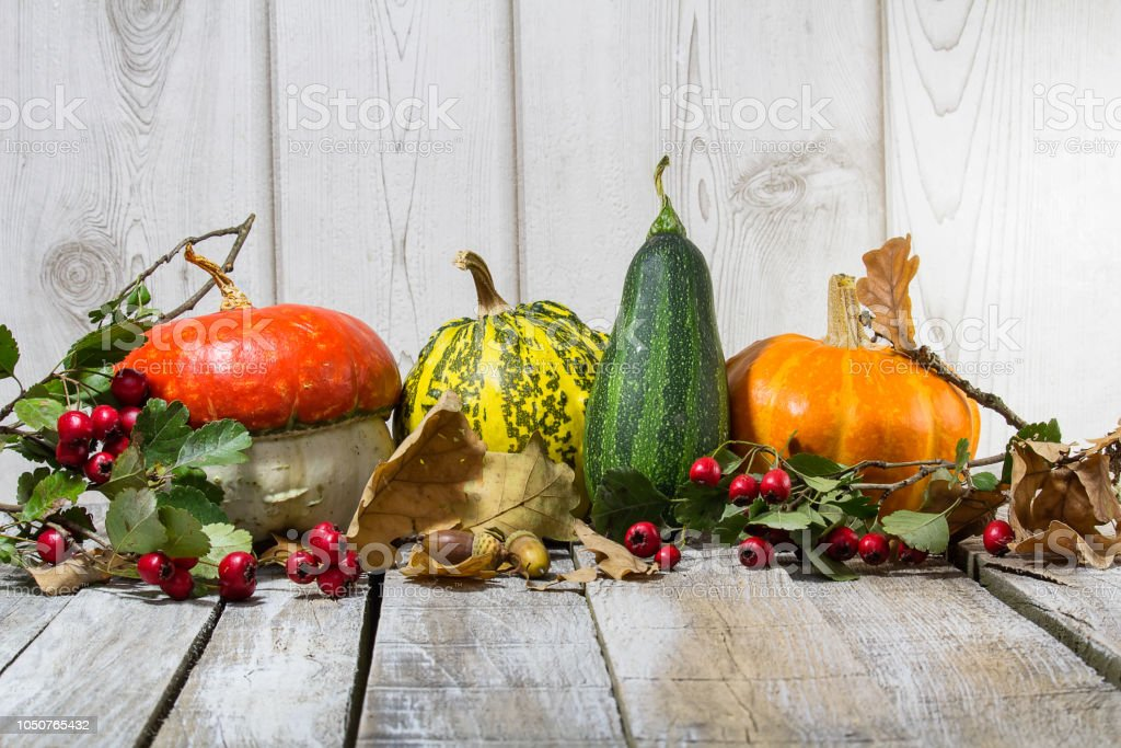 Detail of decorative pumpkin with acorn, brier and leaves on wood background stock photo