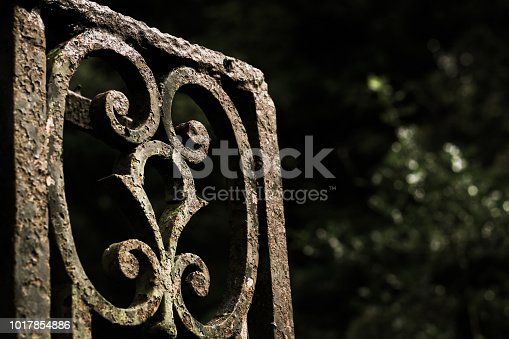 Derelict rusted ornate wrought iron gate in a wild woodland.  The gate originates from the late nineteenth century and a manor house that once occupied the area.  The house has since been demolished and the woodland is now a free public park.  Redburn Country Park, Holywood, County Down.  Tonal image.