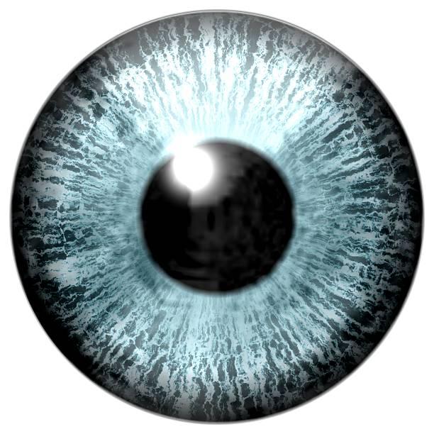 detail des auge mit blauer und schwarzer schüler iris - illustration optician stock-fotos und bilder