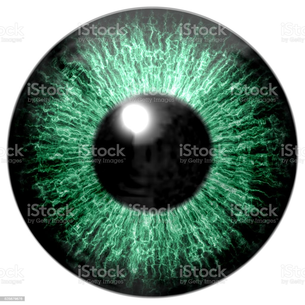Detail of eye with green colored iris and black pupil stock photo
