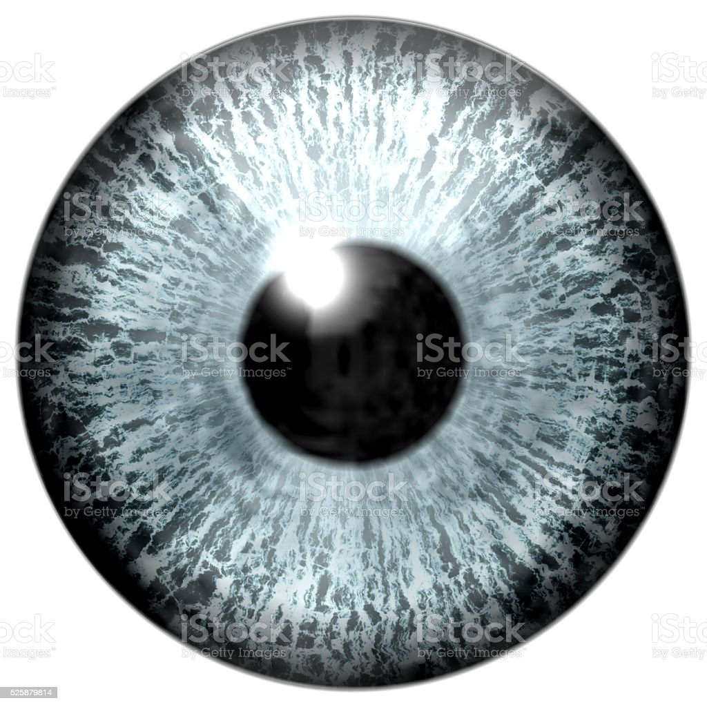Detail of eye with grey colored iris and black pupil stock photo