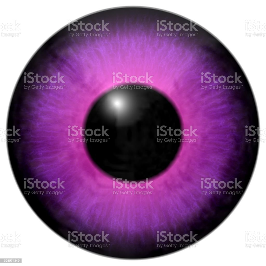Detail of eye with pink, purple iris and black pupil stock photo