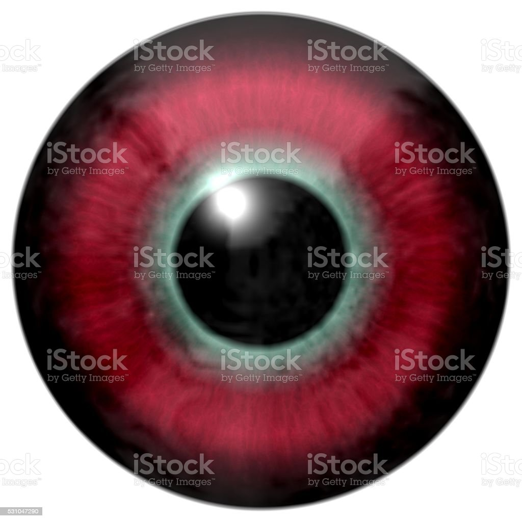 Detail of eye with red-green colored iris and black pupil stock photo