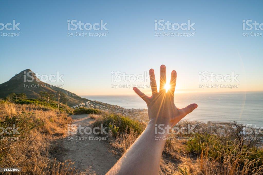 夕日の光線をカップに伸ばしている手の詳細 ロイヤリティフリーストックフォト