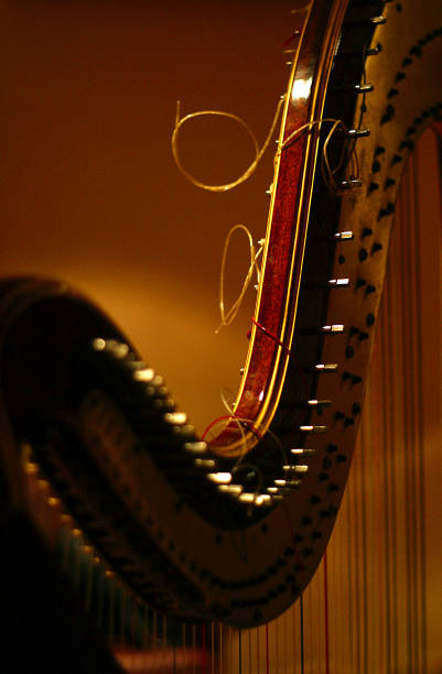 detail of harp - harpist stock photos and pictures