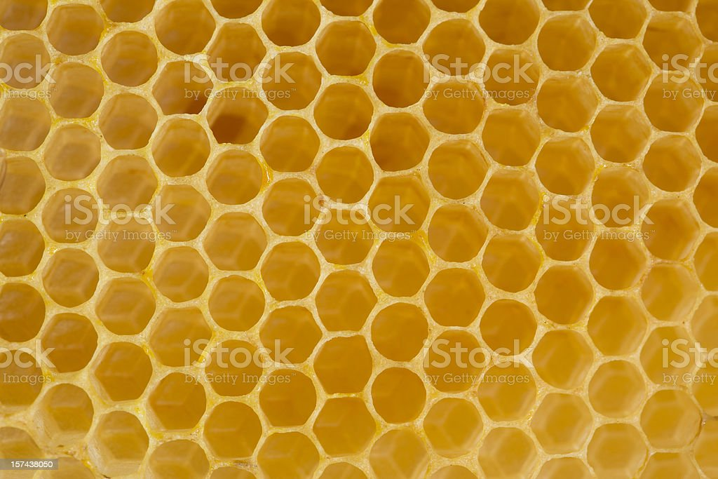 Detail of honeycomb royalty-free stock photo
