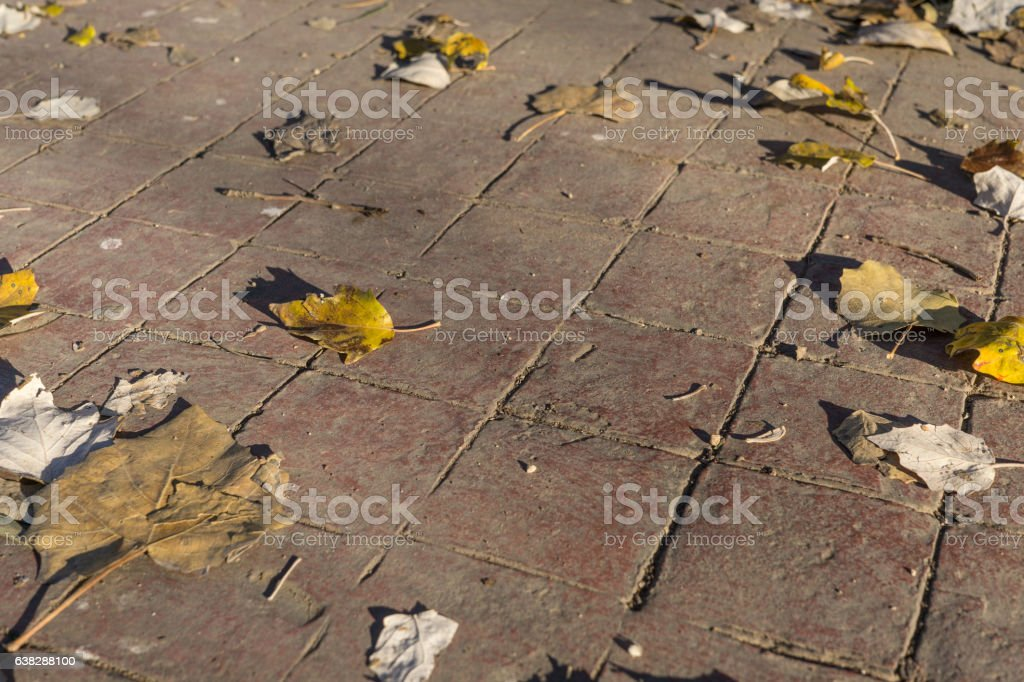 Detail of natural stamped concrete pavement outdoor flooring decorative appearance stock photo