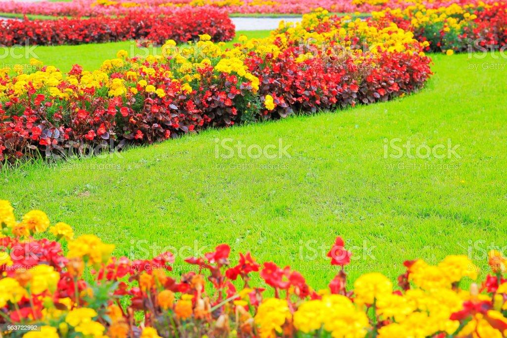 Photo libre de droit de Détail Du Jardin Dornement Avec Parterre De ...