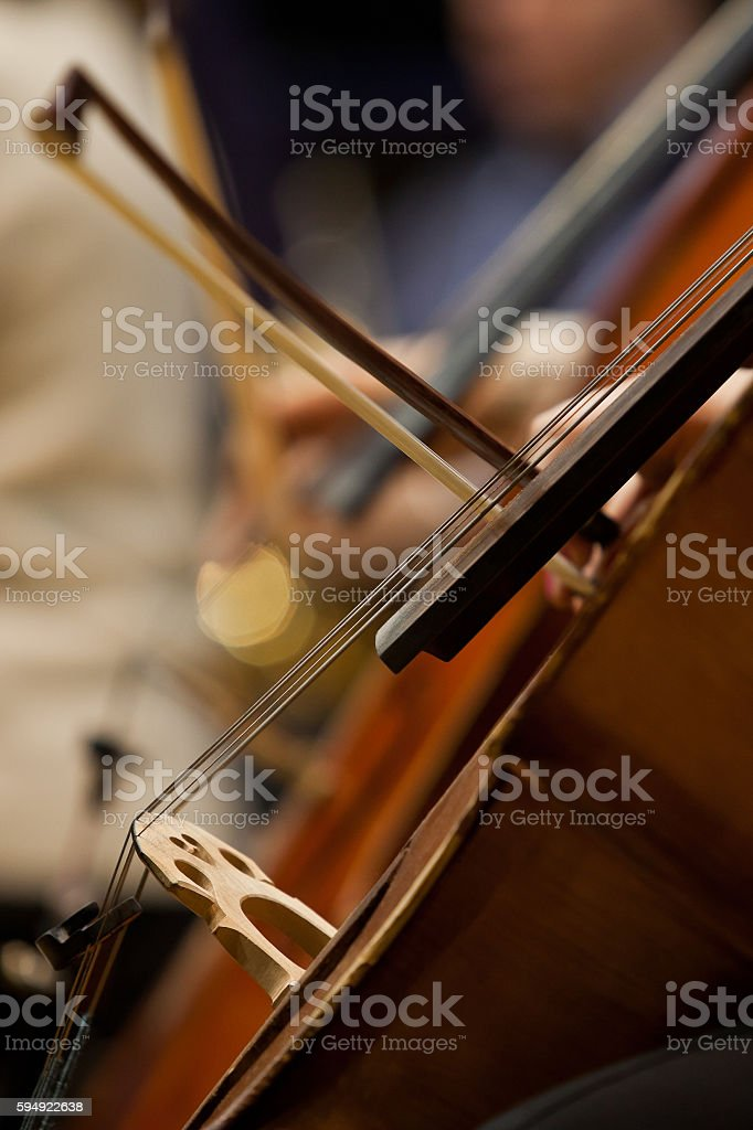 Detail of the cello in an orchestra stock photo