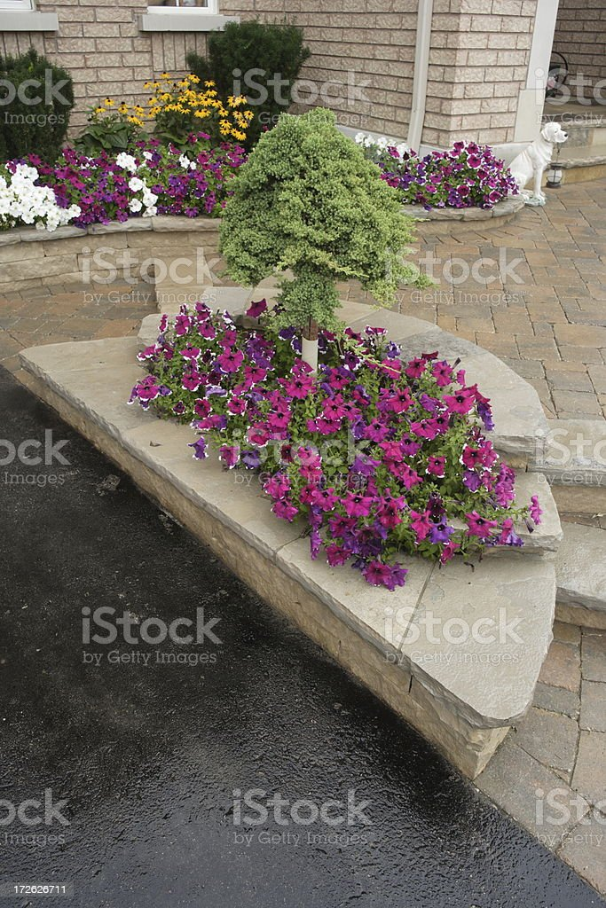 Detail of the front yard royalty-free stock photo