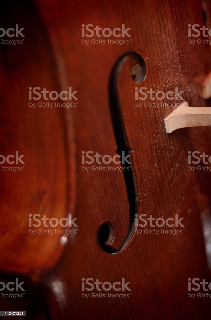 detail of Viola royalty-free stock photo