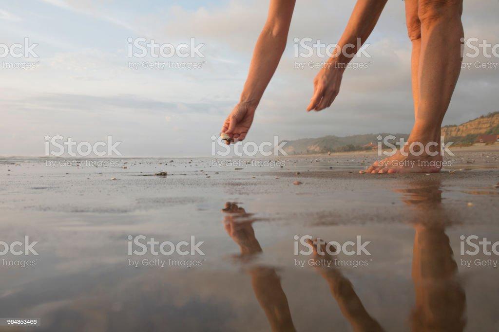 Detalhe de mulher pegando conchas em planícies de maré - Foto de stock de 55-59 anos royalty-free