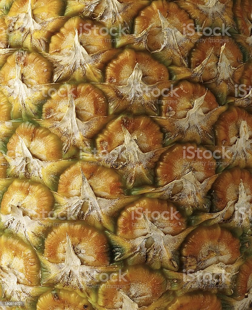 Detail pineapple close-up royalty-free stock photo