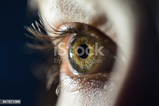 istock Detailed Macro Of Green Female Eye Iris 947821088