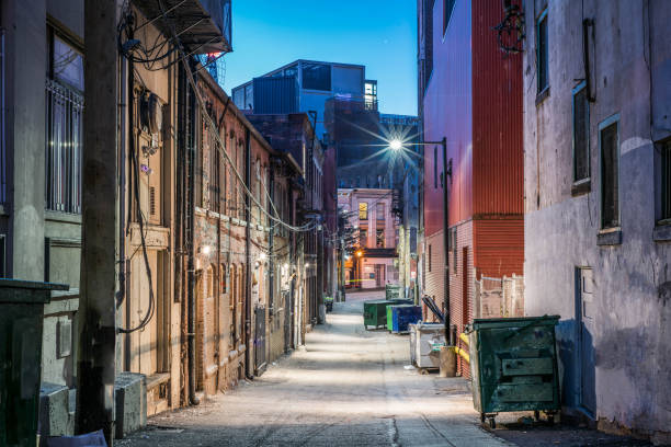 Detailed night photograph of Back alley in Vancouver Canada Photo of back alley in Gastown, Vancouver taken just before dawn. dumpster fire stock pictures, royalty-free photos & images