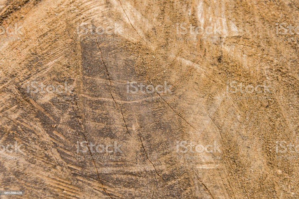 Detailed sawed wood detailed background royalty-free stock photo
