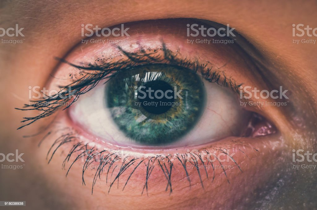 Detailed view of open eye of woman stock photo