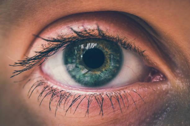 detailed view of open eye of woman - soczewka gałka oczna zdjęcia i obrazy z banku zdjęć