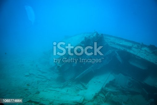 A group of fish swimming around a wrecked ship which is covered in sand
